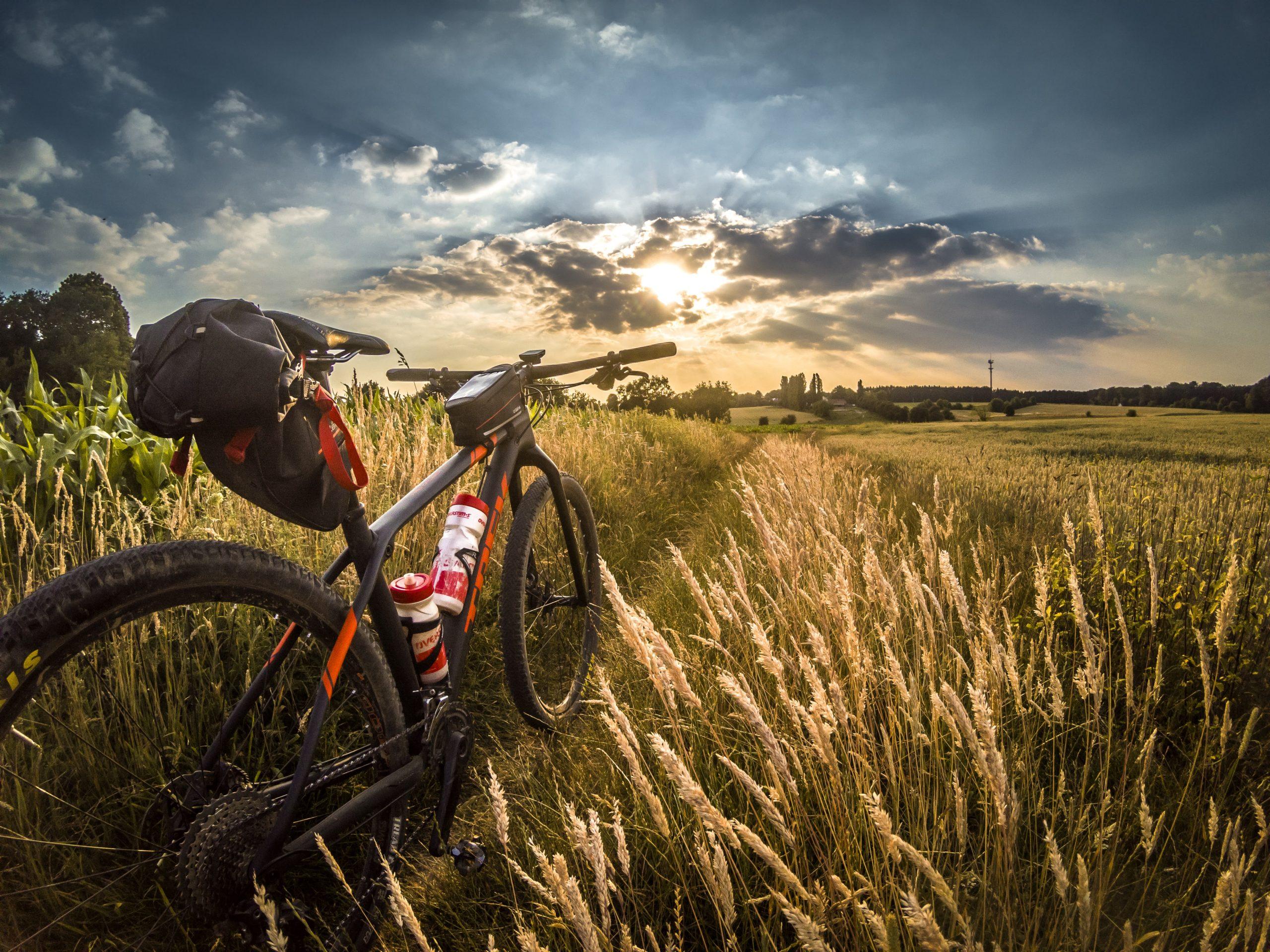 Melhor bicicleta para trilha