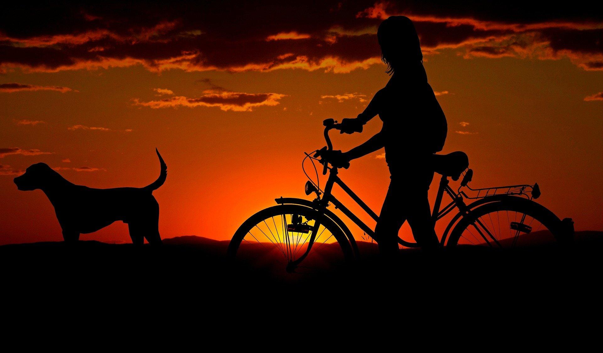 Qual é a melhor bike para começar a pedalar?
